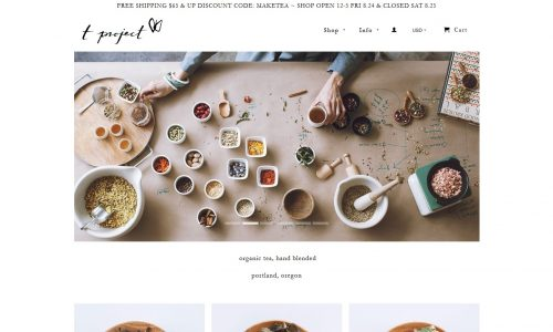 T Project Website Snapshot